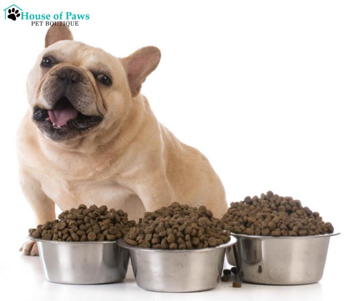 This blog show you that what dogs and cats eat is absolutely not dry pet food fiction