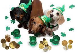 St. Patricks day 3