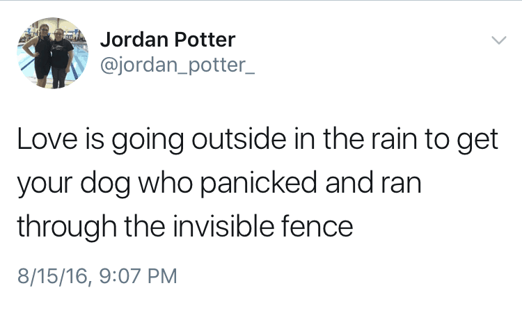 Love is going outside in the rain to get your dog who panicked and ran through the invisible fence.