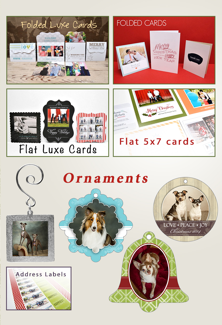 Pet Portraits OC Holiday product samples