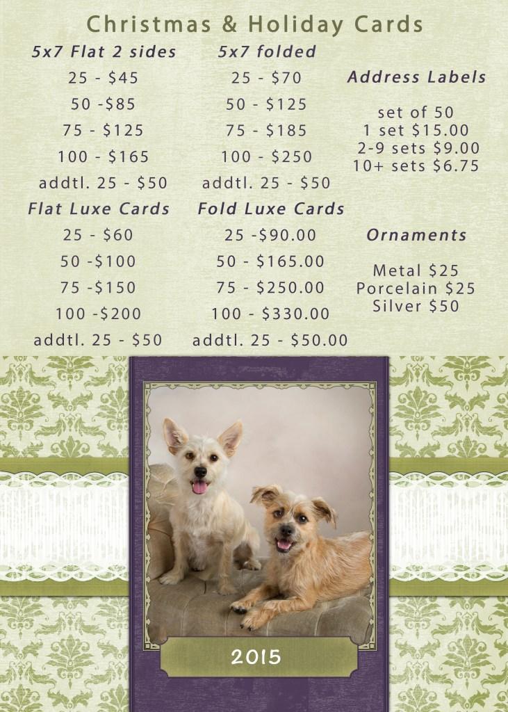Pet Portraits OC holiday cards 2015