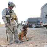 Bronze Star Winning Military Dog Shot in Wyoming-Owner Wants Dog Buried With Military Honors