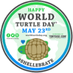 Happy World Turtle Day from American Tortoise Rescue
