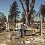 Alley Cat Allies Provides Urgent Support to Help Cats in Danger from Western Wildfires