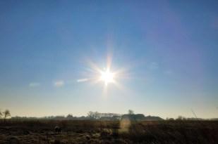 16-Februar sonniger, kalter Wintertag!
