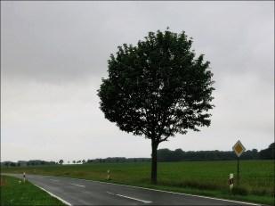 18-Juni noch mal viel Regen!