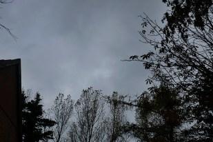 5-November immer nur grau und regnerisch