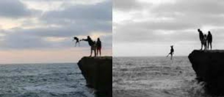 dog-tossed-off-sunset-cliff