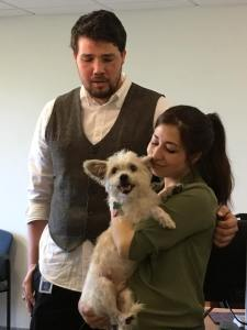 Missing dog found and reunited with owner