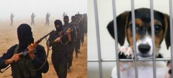 isis-killing-puppies
