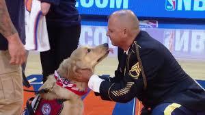 knicks-and-service-dog-2