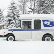 Mail carrier helps elderly dog on his route