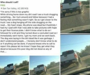 Pinal County dog hanging FB