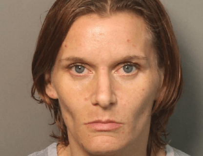 Woman responsible for killing dog in car arrested
