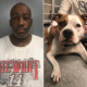 Man accused of choking and throwing dog to the ground