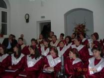 Bivolarie - februarie 2009 (4)