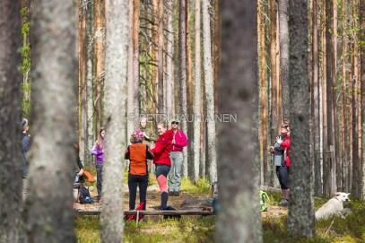 Metsän keskellä