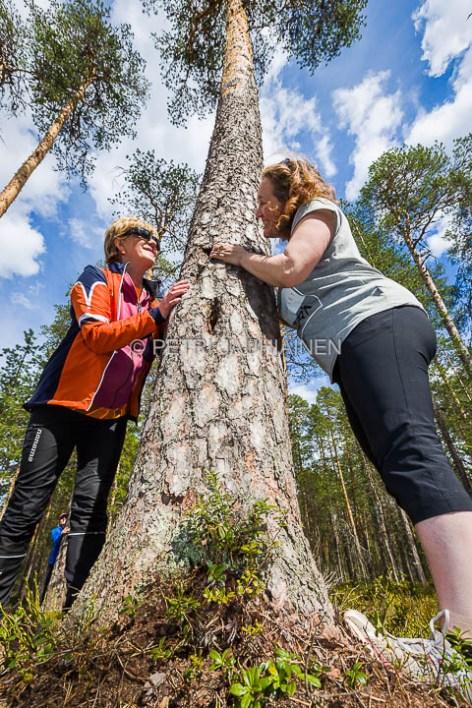 Tiilikkajärven Kansallispuisto Luontoon.fi valokuvaaja Petri Jauhiainen