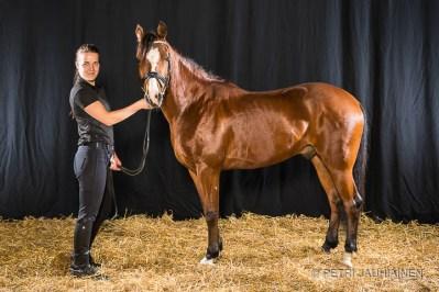 Laura ja poni