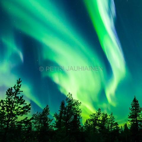 Koli Northern Lights valokuvaaja Petri Jauhiainen