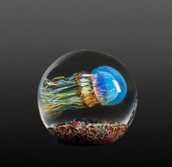 Satava-Moon-Jellyfish-Side-Swimmer
