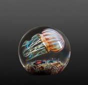 Satava-Passion-Moon-Jellyfish-Side-Swimmer