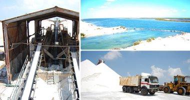 صورة مصر تنتج 4.6 مليون طن ملح بقيمة مليار جنيه سنويا نصفه من سيناء وسيوة