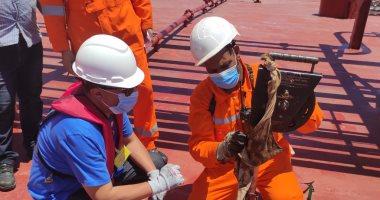 Photo of رئيس ويبكو يتفقد ناقلة تصدير بترول بـميناء الحمراء بعد شحن 15 مليون برميل