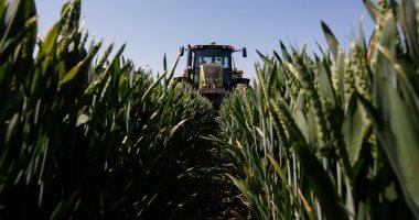 مطالبات بعمل صندوق للتأمين التكافلى على المحاصيل الزراعية