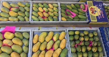 ارتفاع صادرات مصر الزراعية إلى 144 مليون دولار في نوفمبر الماضي