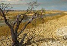 ندوة حول مدن منطقة الشرق الأوسط وشمال أفريقيا وتأثرها بالتغيرات المناخية