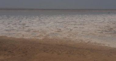 إنشاء 8 آبار جوفية عميقة لتغذية ملاحة برج العرب بـ5 ملايين متر مياه سنوياً