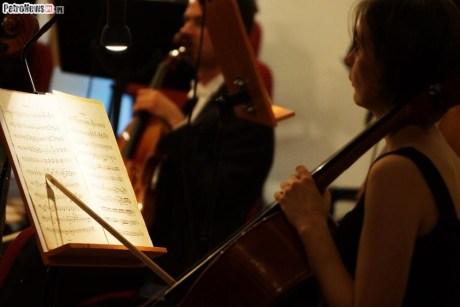 Orkiestra Symfoniczna (20)
