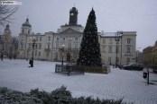 Śnieg (4)