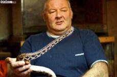 Węże (4)