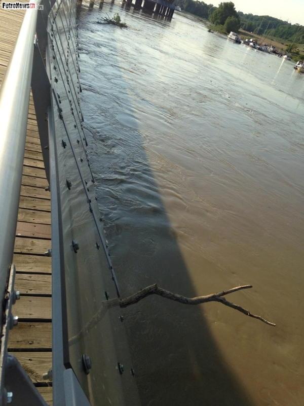 Rzeka Wisła (6)