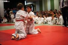 Judo SDK (10)