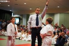 Judo SDK (12)