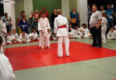 Judo SDK (2)