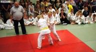 Judo SDK (24)