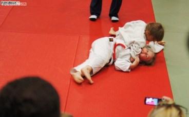 Judo SDK (26)