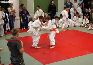 Judo SDK (28)