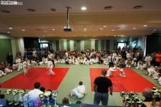 Judo SDK (29)