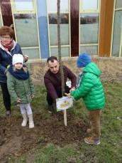 sadzenie drzew (40)