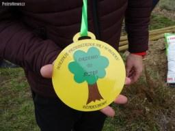 sadzenie drzew (45)
