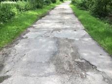Droga do schroniska