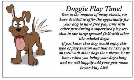 dog_play2