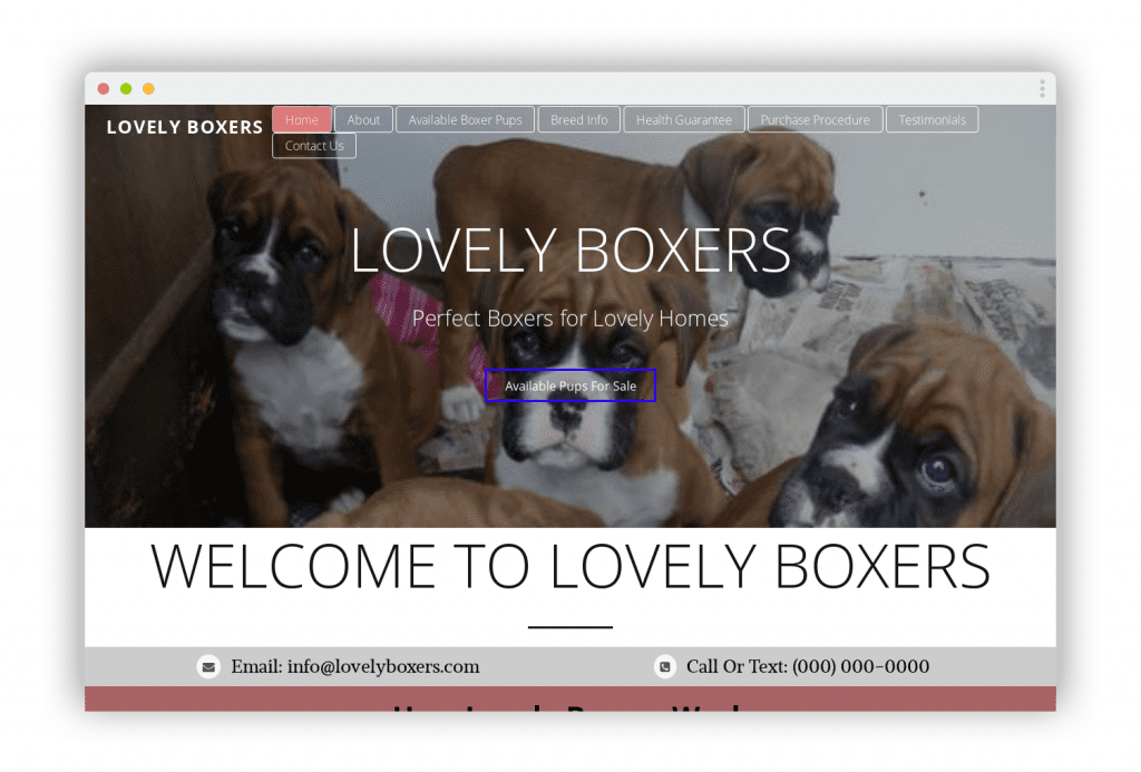 Lovelyboxers