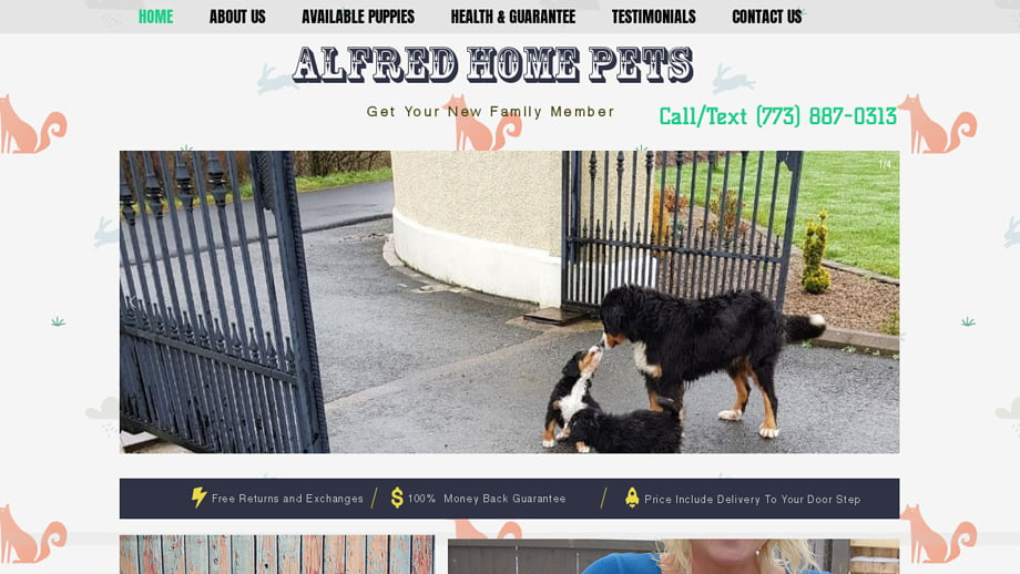 Alfredhomepets