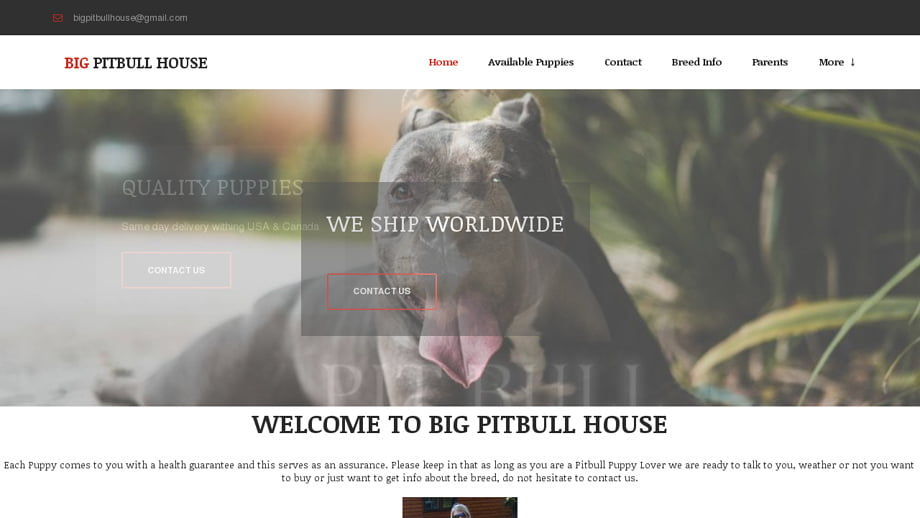 Bigpitbullpuppieshouse